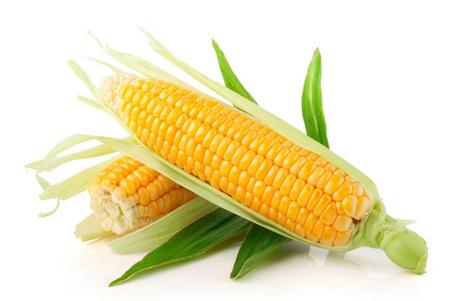 玉米健康减肥食谱 快速瘦身不反弹