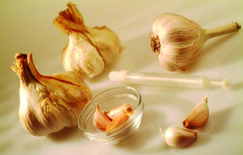 秋季健康减肥食谱:大蒜减肥法一周排毒去脂