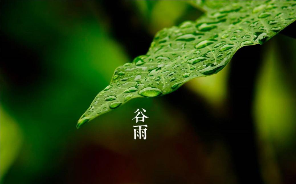 谷雨节气英文介绍!