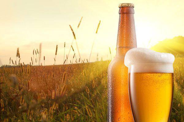 工业啤酒与精酿啤酒的区别