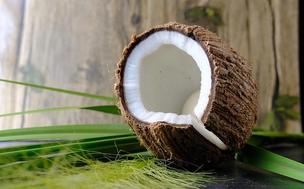 椰子油涂脸护肤好处及注意事项都有哪些?