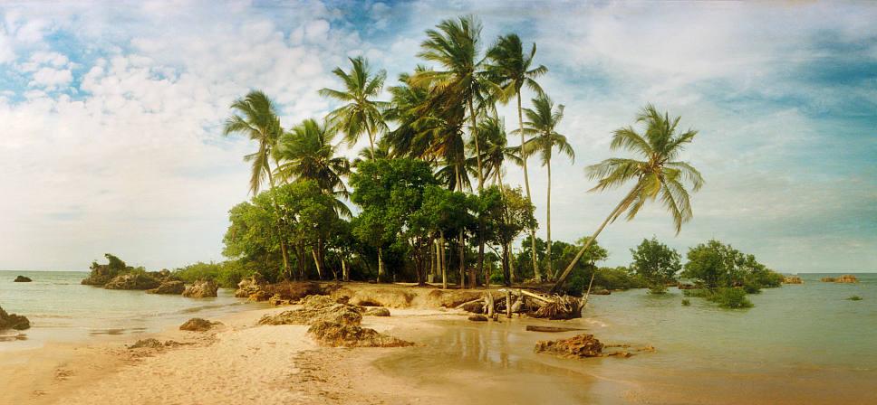 椰子油在我们生活中的影响都有哪些?