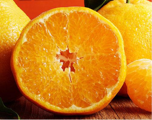 春见柑橘水果中的贵族,外形丑内在美!
