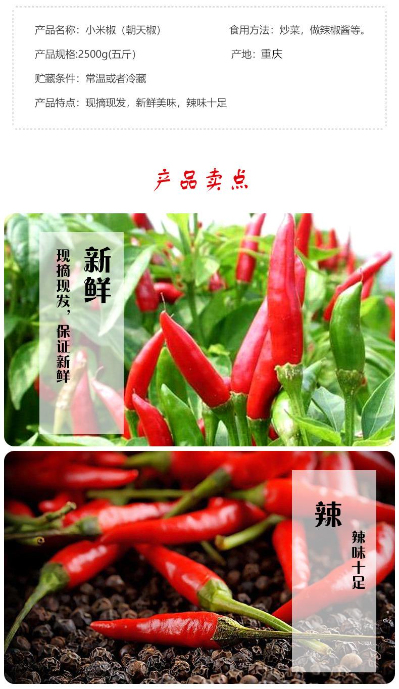红辣椒的介绍