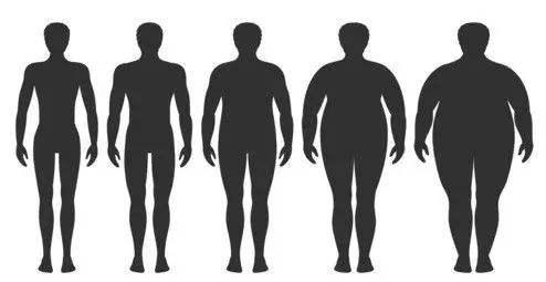 精油减肥靠谱吗?90%的人不知道它的瘦身原理!