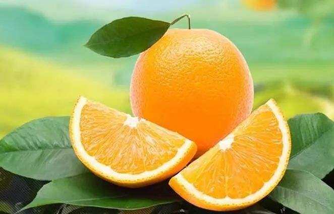 脐橙的功效 每天吃脐橙的好处