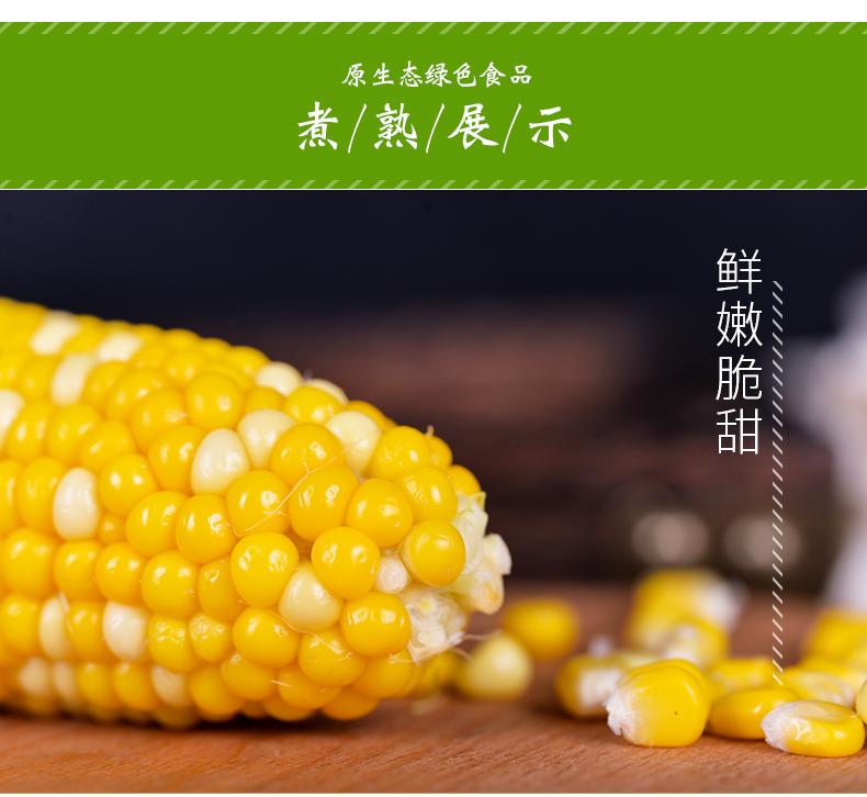 煮熟的玉米