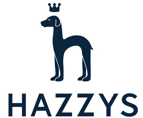 哈吉斯牌子是什么档次(了解一下hazzys哈吉斯品牌到底怎么样)