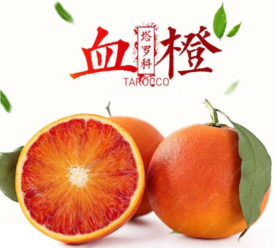 10月份塔罗科血橙种植技术