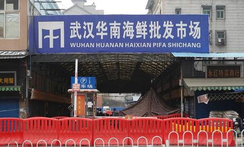 武汉海鲜 市场