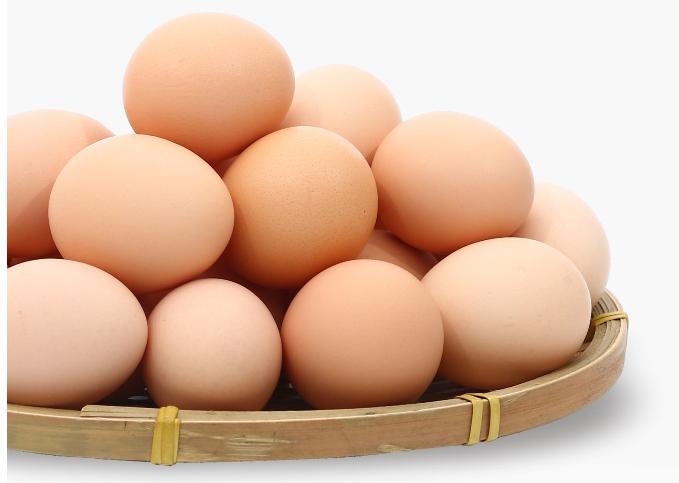 鸡蛋价格为什么上涨?