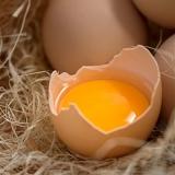 富硒散养农家土鸡蛋  新鲜草鸡蛋  柴鸡蛋有机鸡蛋30枚