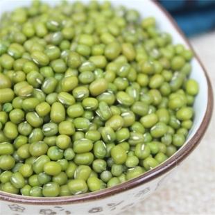 农家自种生态绿豆  新货毛绿豆颗粒饱满  绿豆芽绿豆粥  安全放心农产品