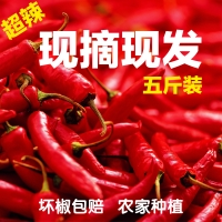 新鲜红辣椒蔬菜小米椒  超辣农家朝天椒  指天椒土辣椒七星椒5斤装