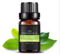 茶树精油10ml 控油祛痘 消炎 正品单方精油买2送1