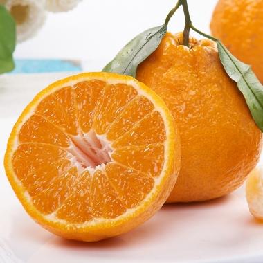 不知火丑橘 应季水果脆甜不上火吃了还想吃丑八怪桔子20斤