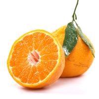 丑橘凸顶柑 营养丰富不上火好吃的柑橘品种新鲜水果5斤