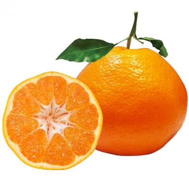 粑粑柑 忠橙品牌之一春见柑橘新鲜水果营养丰富20斤