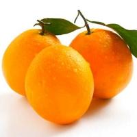 纽荷尔橙子新鲜现摘水果手剥甜脐橙肉嫰多汁10斤