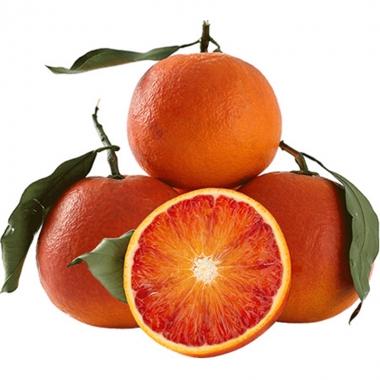 忠义之州忠橙之县是什么,忠橙之县是哪儿?